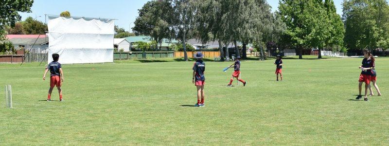 Junior Cricket Field Day